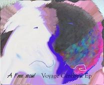 Voyage Cérébral EP - A Free Soul - MRM